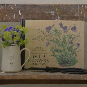 Vintage Books at The Reed Warbler Shop