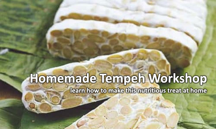 Homemade Tempeh Workshop