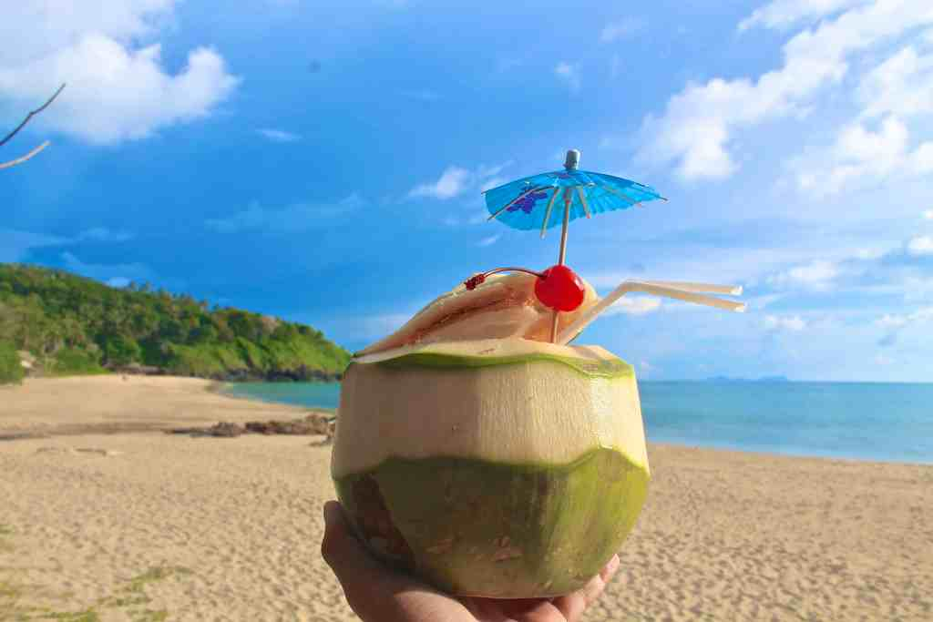 Republic of Rose Beginner's Guide to Thai Food Fruit Coconut Drink