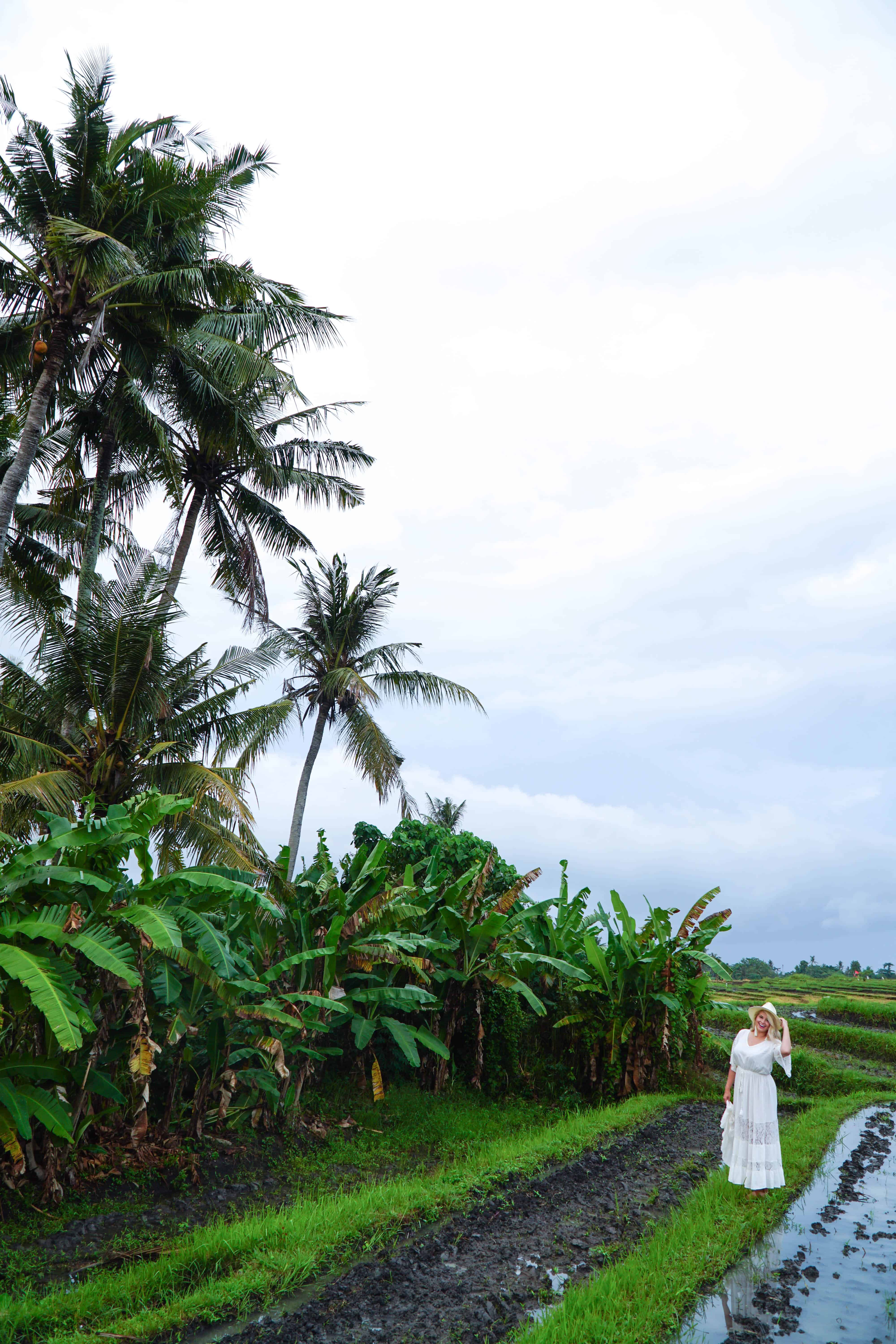 Canggu | Amazing Photos to Inspire You to Visit Bali | The Republic of Rose