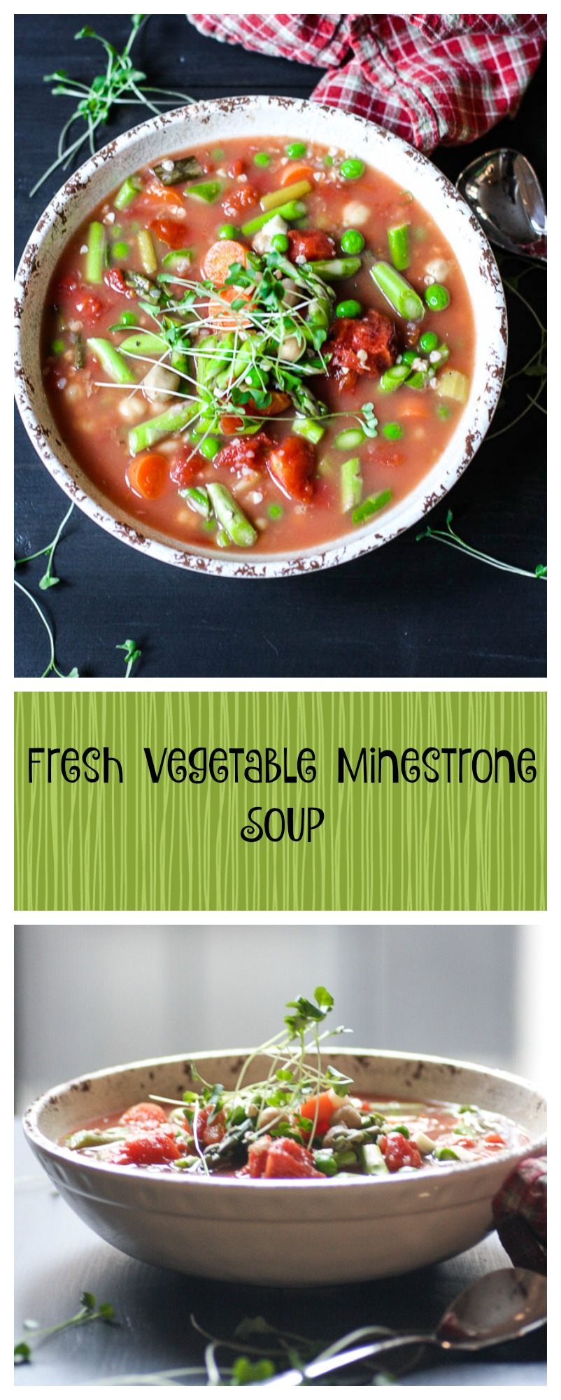 slow cooker vegetable minestrone soup