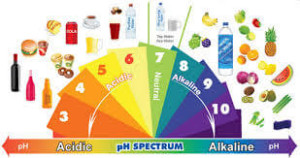pH Spectrum with food images.