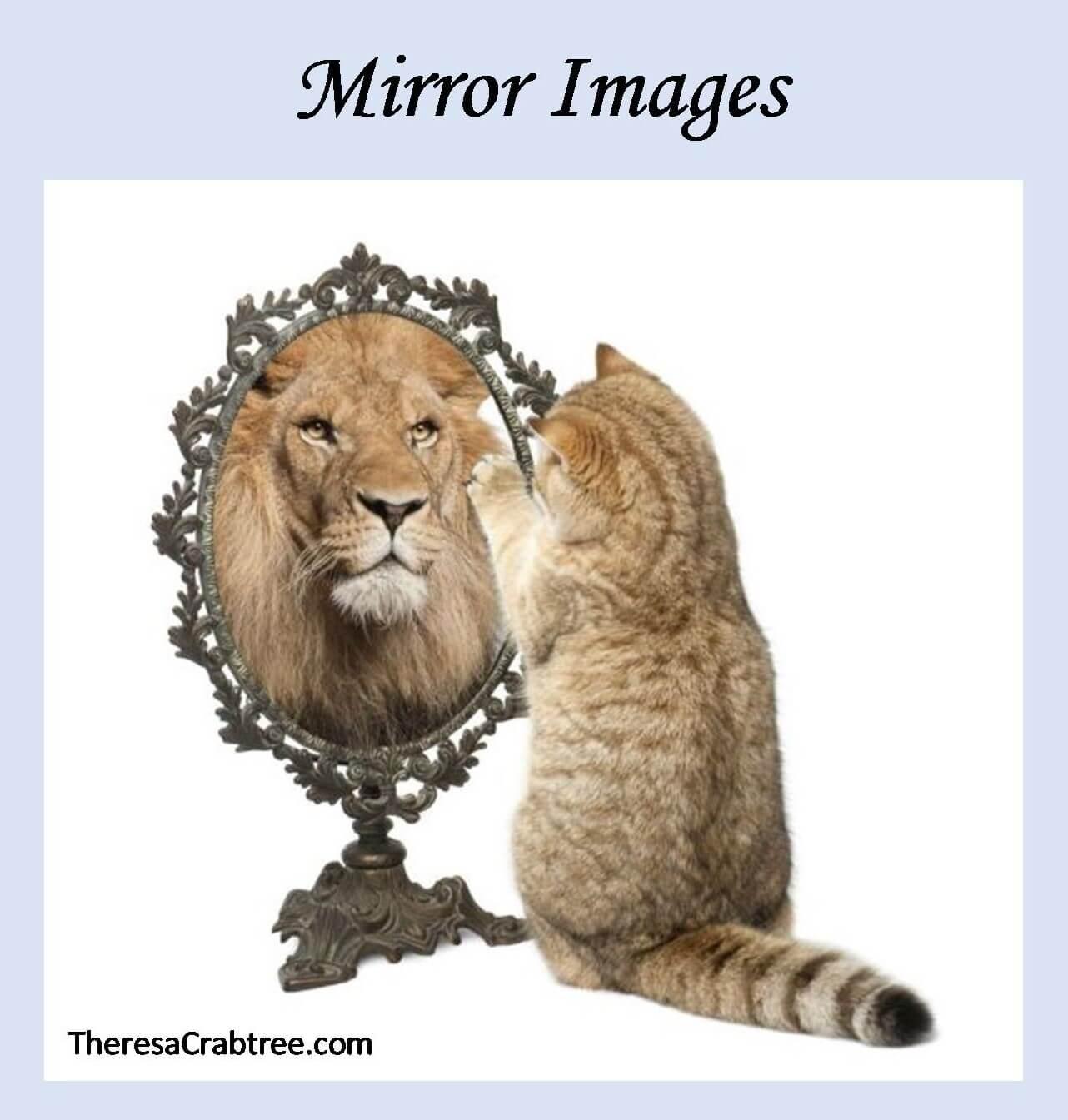 Soul Connection 102 ~ Mirror Images