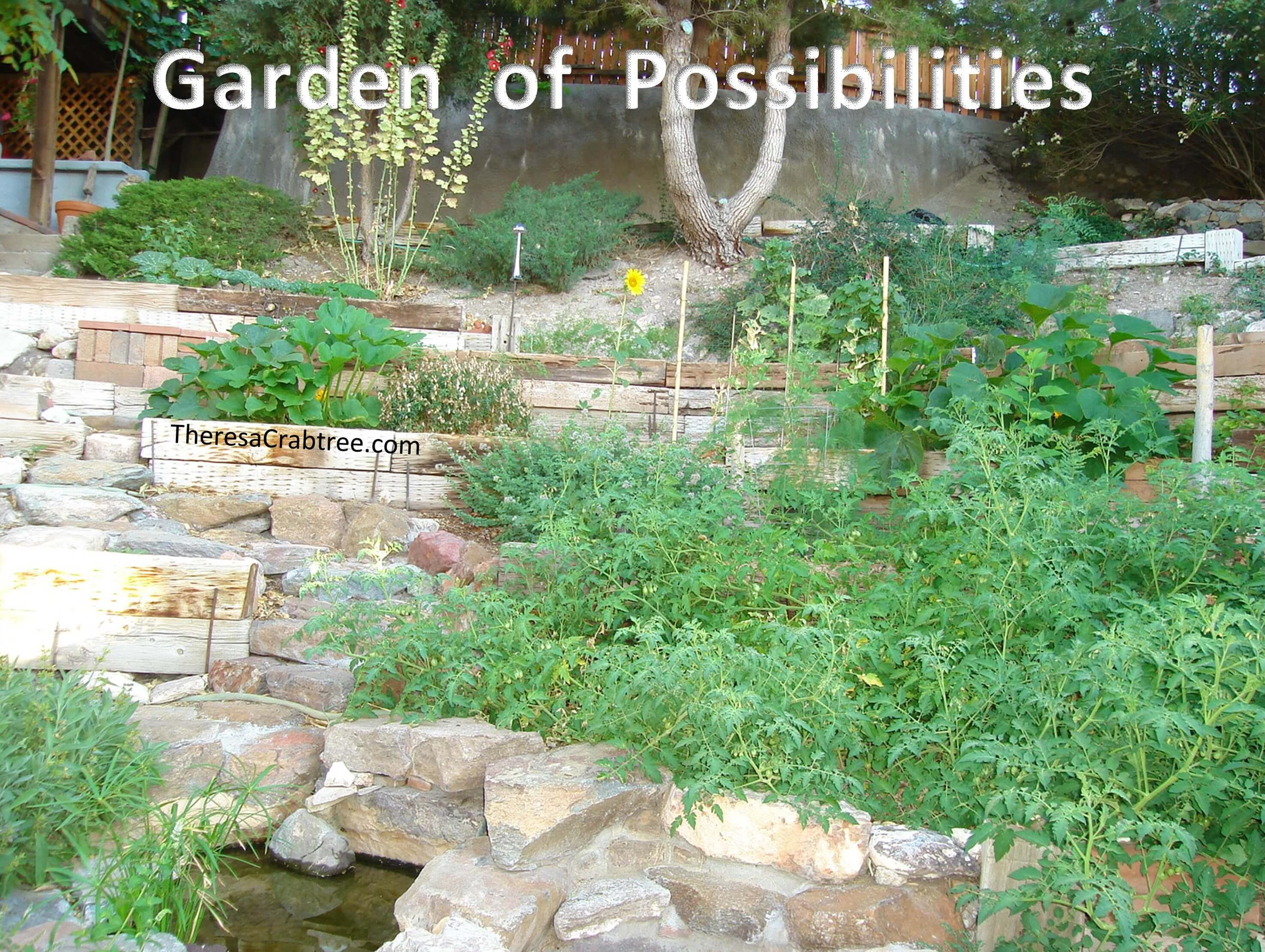 Soul Connection 28 ~ Garden of Possibilities