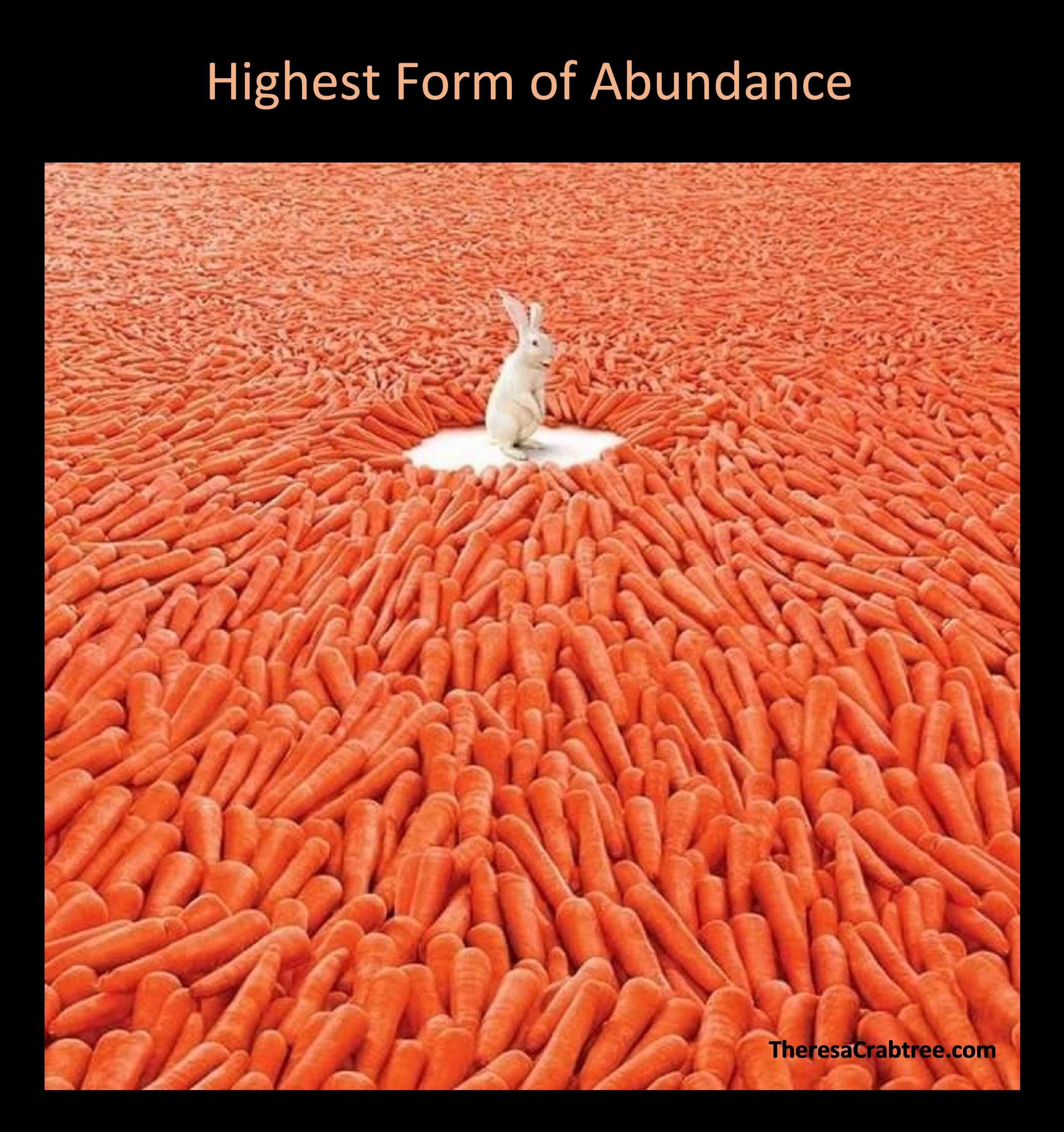 Soul Connection 64 ~ Highest Form of Abundance
