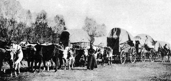 wagon_train-photo-public-domain