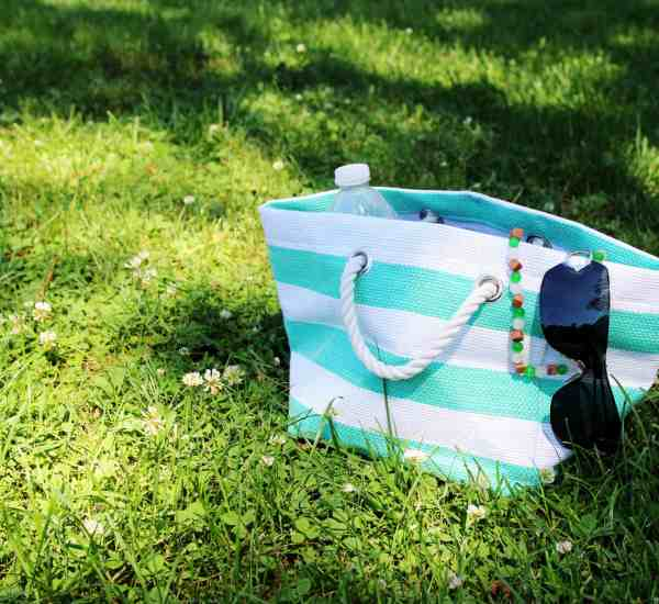 baseball mom bag sitting in grass with sunglasses