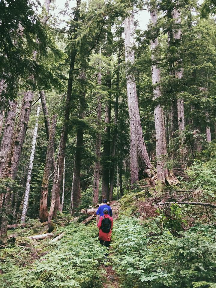 Della Falls, Vancouver Island | theringers.co