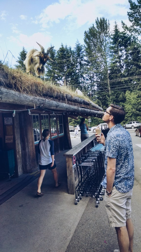 Goats on the Roof, Coombs, BC | theringers.co