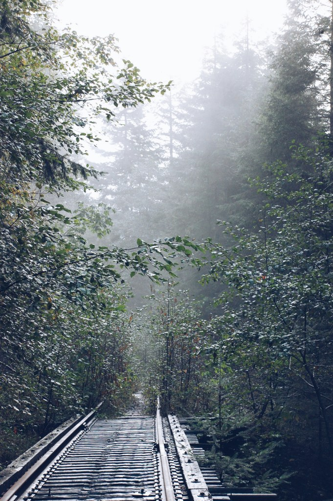 Upper Salmonberry River Trail, Oregon | theringers.co