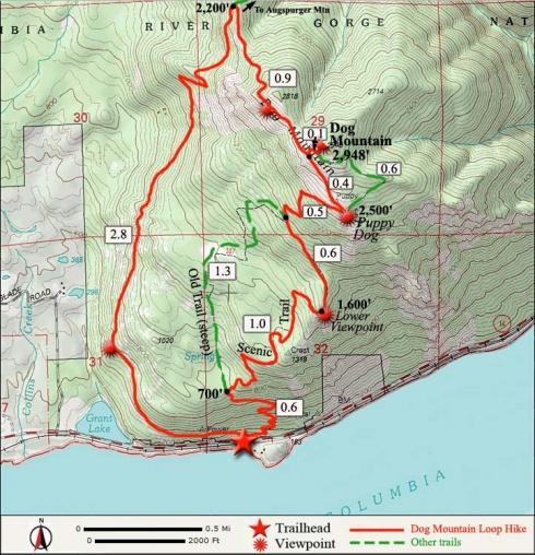 Dog Mountain Trail Map