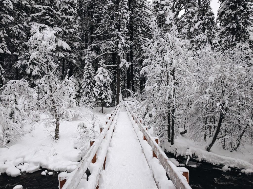 Snowshoe at Tamawanas Falls, Oregon | theringers.co