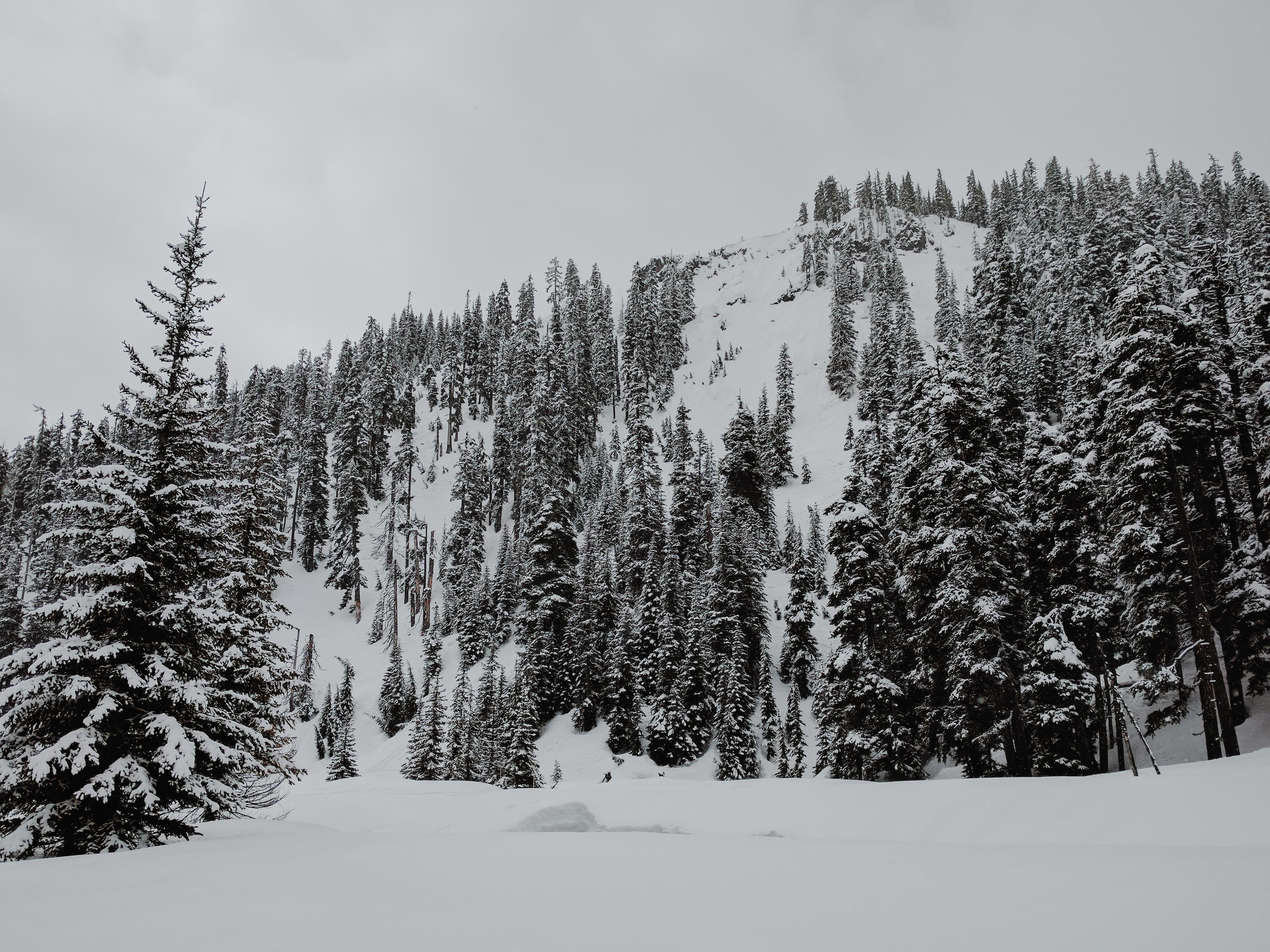 Snowshoe on Mount Hood