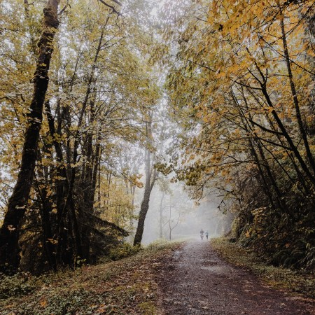 Portland, Oregon | theringers.co