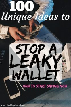 100 Unique Ideas to Stops a Leaky Wallet. Start Saving Now. The Rising Damsel #girlboss #saver #savemoney #money #finances #momblog