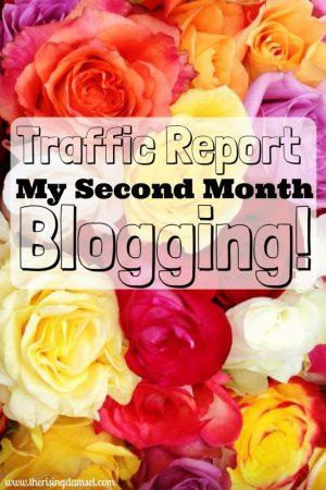 Traffic Report 2nd Month Blogging. The Rising Damsel #blog #blogger #girlboss #diy #wah