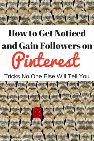 How to get noticed and gain followers on Pinterest. Tips and tricks no one else will tell you. The Rising Damsel