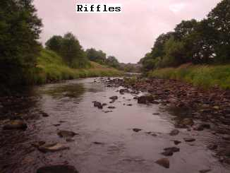 riffles