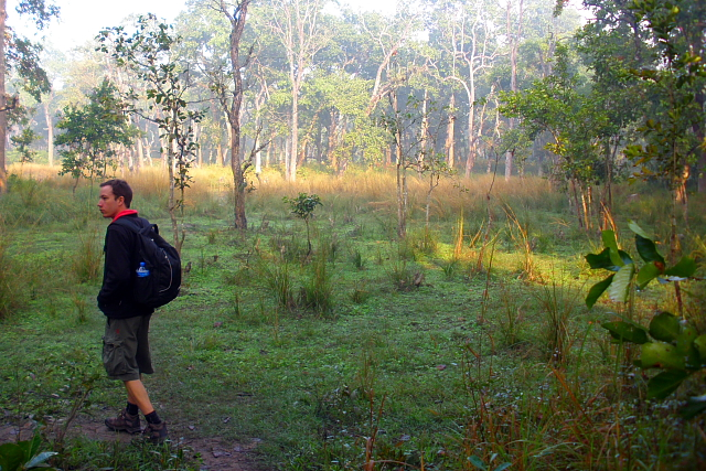 Walking through the forest in Chitwan National Park, Nepal
