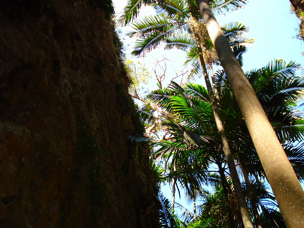 Cliffs at Mt Greville in Queensland, Australia