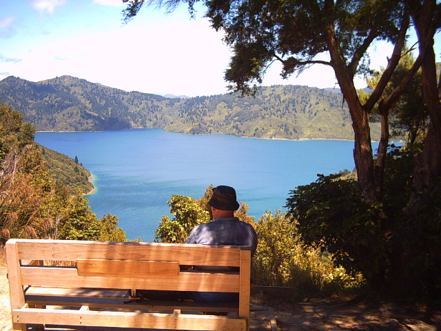 Having a rest on the Queen Charlotte Track, New Zealand
