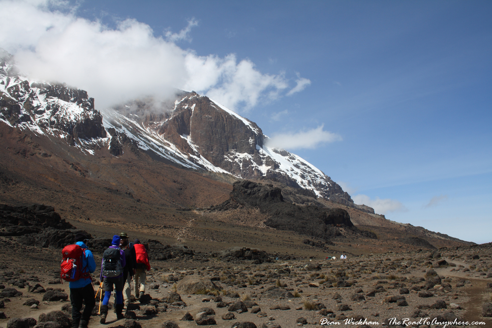 Hiking towards the Lava Tower on the Machame Route on Mount Kilimanjaro, Tanzania