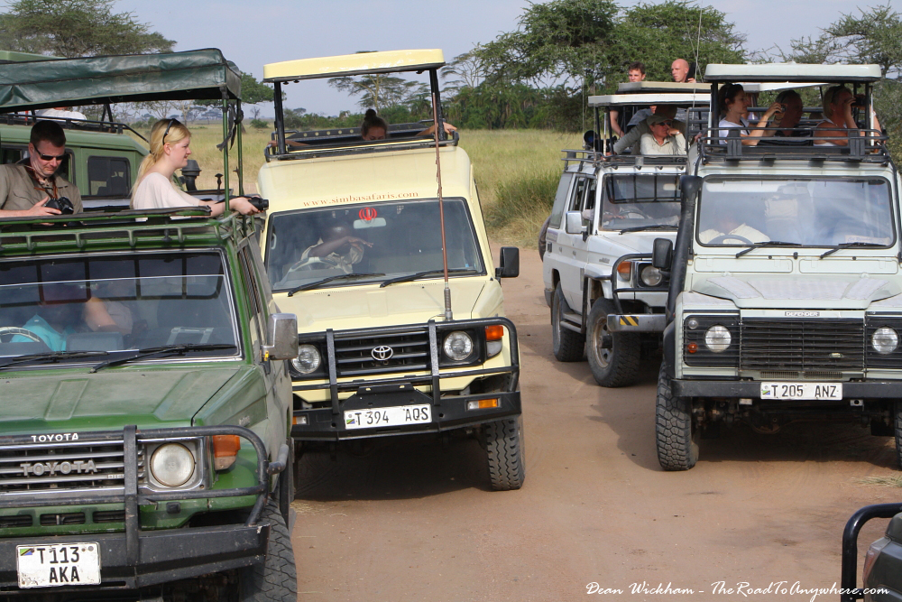 Safari Vehicle track jam in Serengeti National Park, Tanzania