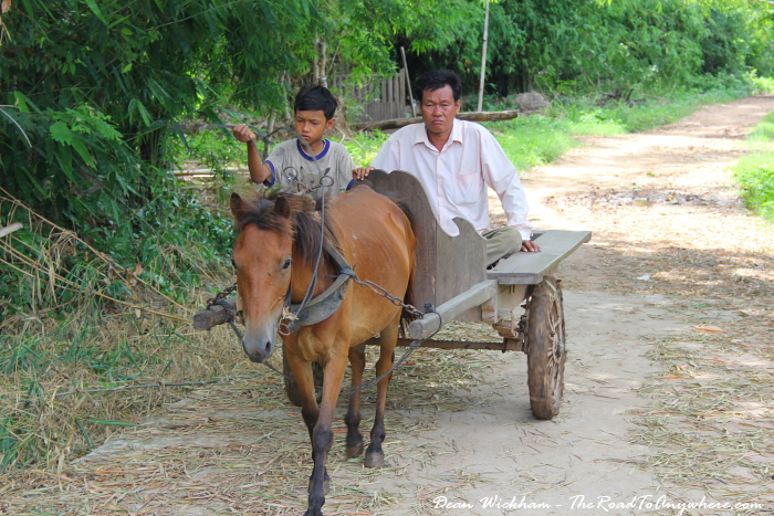 Horse and cart on Koh Trong in Cambodia