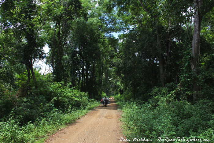 Forest path on Don Khone, Laos