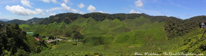 Panorama of the Cameron Valley Tea Estate in Cameron Highlands, Malaysia