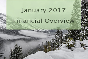 January 2017 Financial overview