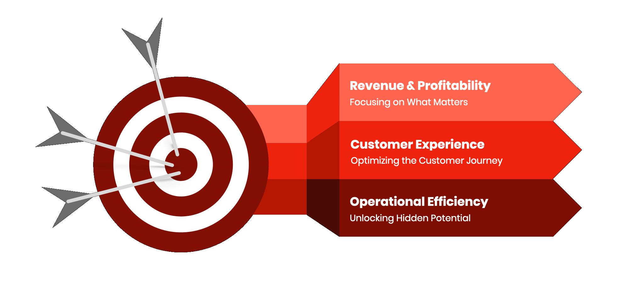 Revenue and profitability, Customer Experience, and Operational Efficiency