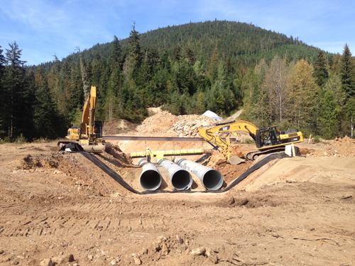 Trans Mountain pipeline maintenance delayed at creeks due to fish