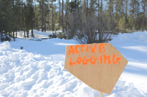 Community forest holds Annual General Meeting