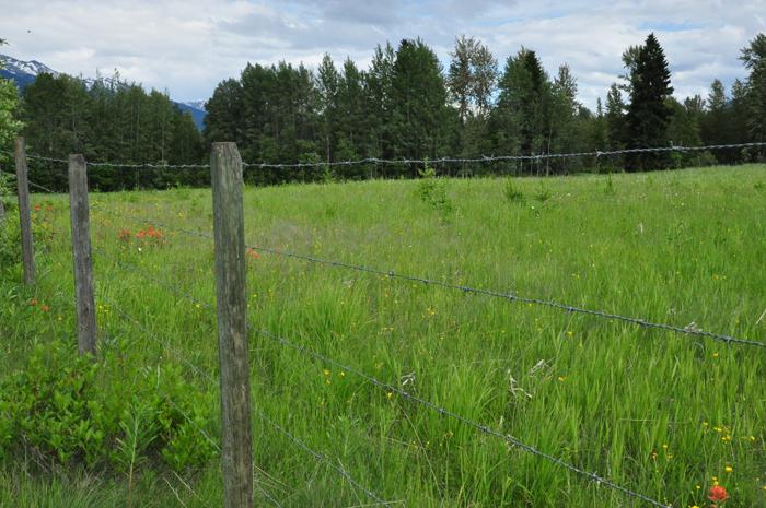 NDP want farmland used for farming