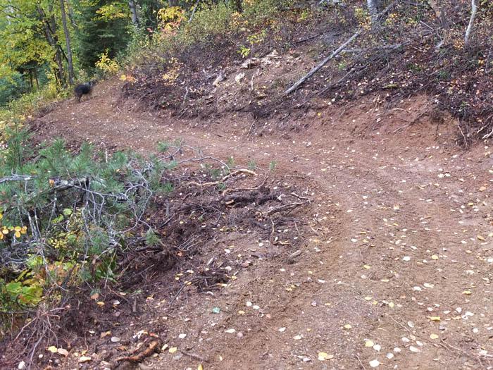 New downhills add to McBride biking roster