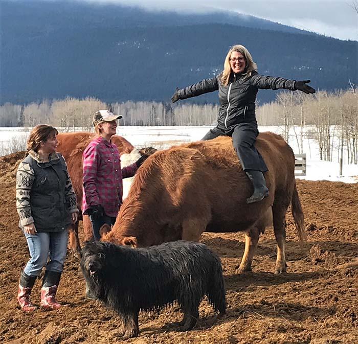 Farmers Lana Popham on cow-Jessica Smith