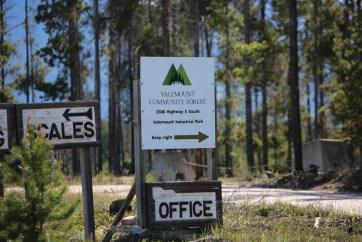 valemount community forest, VCF