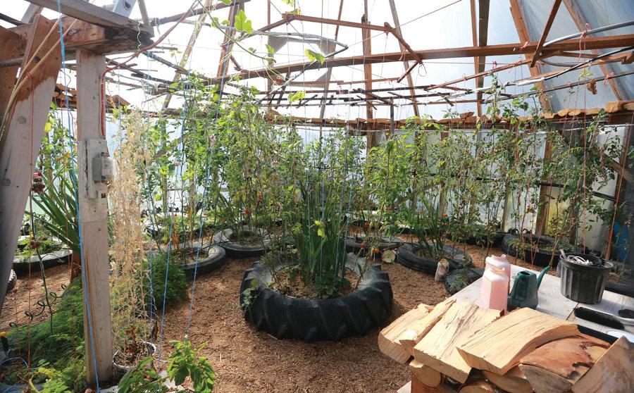 John_Christison_indoor_greenhouse2