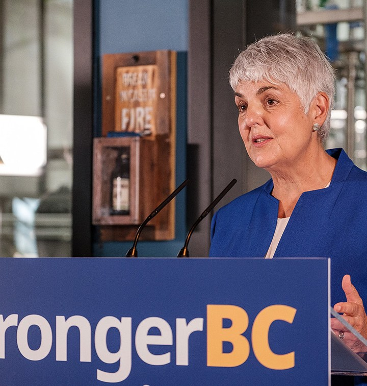 B.C.'s economic recovery plan highlights