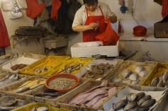 Seafood selection
