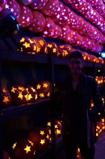 Stars at PumpkinBlaze