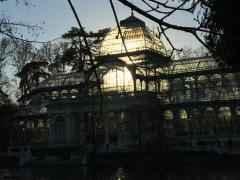 Backlit Crystal Palace