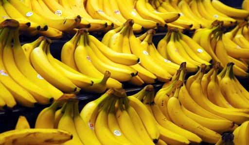 Are Bananas Going Extinct? Everything You Need to Know.