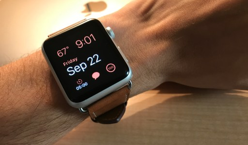 New Apple Watch Bands to Celebrate Turning 22!