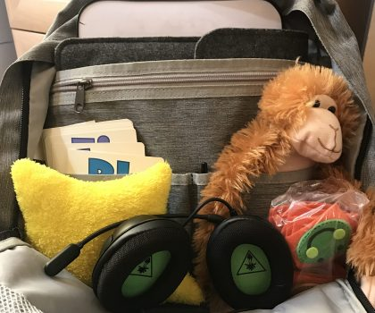 Teaching With VIPKID On My Road Trip to Kalahari