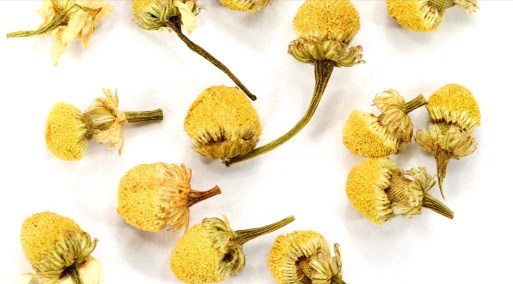 Chamomile Tea Can Help Calm Your Anxiety