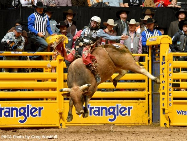 Nfr+Rodeo