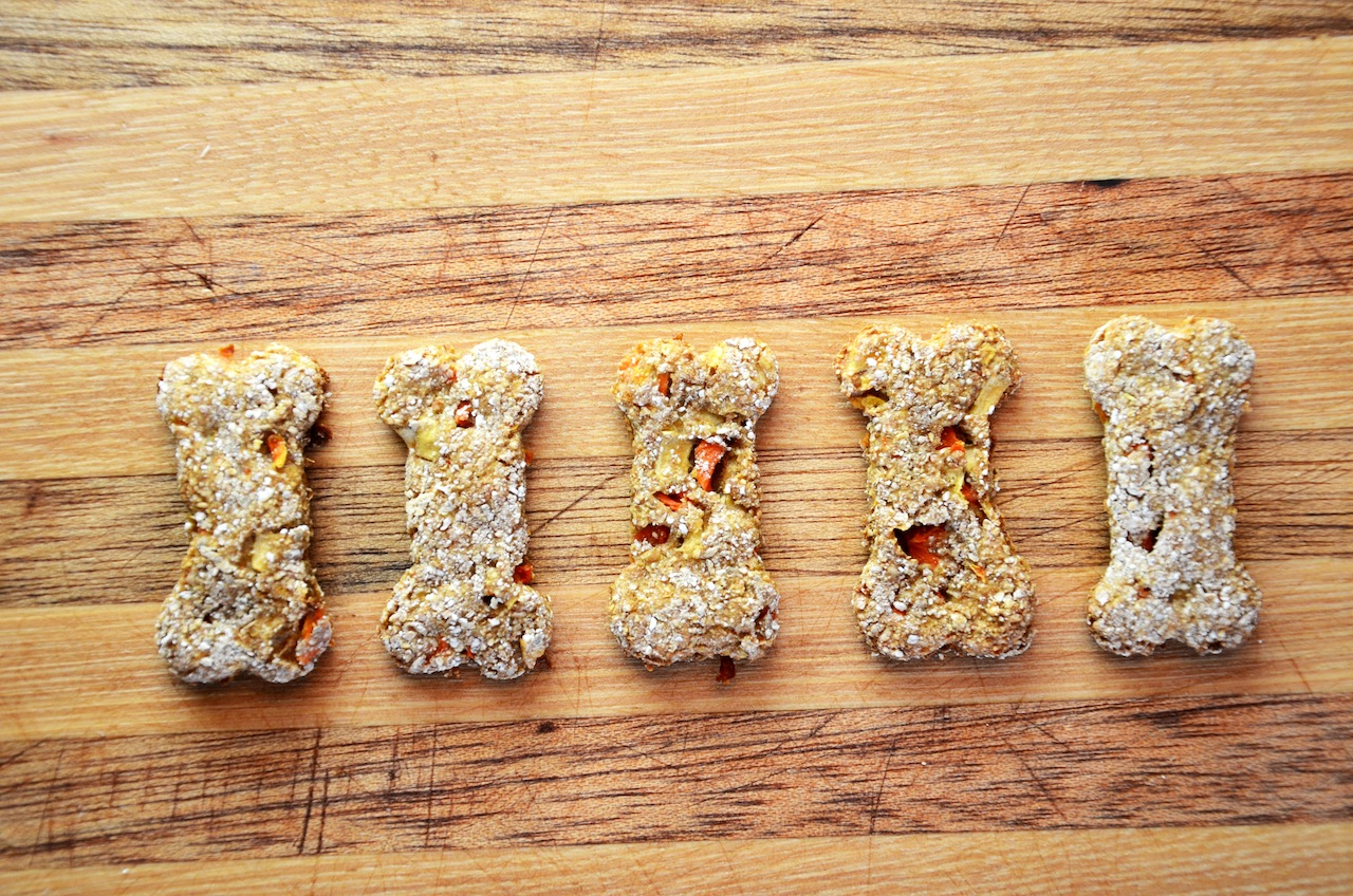 Homemade Apple And Carrot Dog Treat Recipe The Rodimels