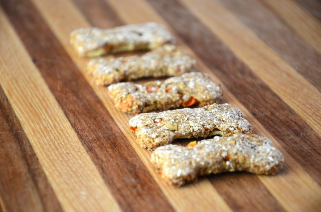 Homemade Apple Carrot Dog Treats